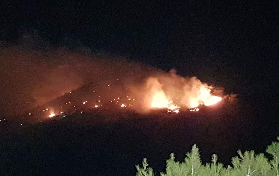 Μεγάλη φωτιά σε δασική περιοχή του Όρους Αιγάλεω