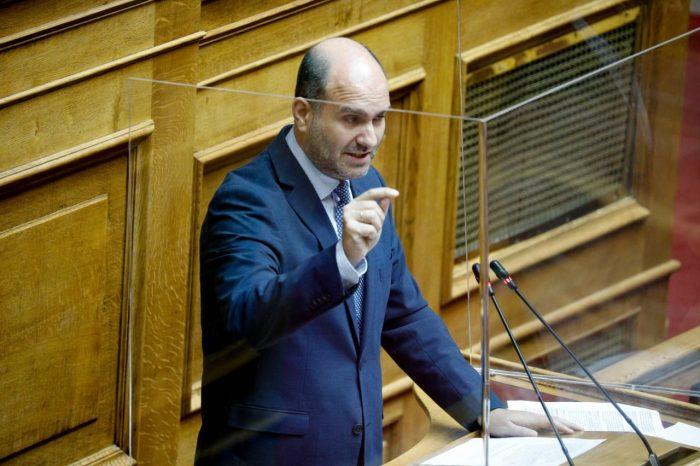 Ο Δημήτρης Μαρκόπουλος ζητά να αυξηθεί η επιχορήγηση προς τους Δήμους για τη φροντίδα και την περίθαλψη των αδέσποτων ζώων