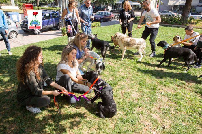 Εκδήλωση για τα αδέσποτα στον Δήμο Χαϊδαρίου, με αφορμή την Παγκόσμια Ημέρα των Ζώων